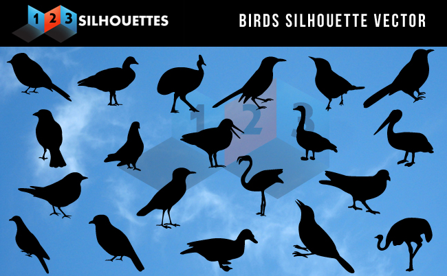Birds-Silhouette-Vector-cover-image