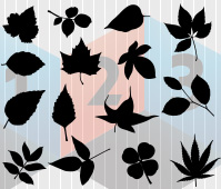 Leaves Silhouette Vector Clipart les