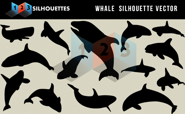 Whale silhouette vector